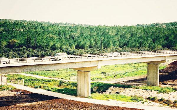סיבוס רימון - כביש חוצה ישראל