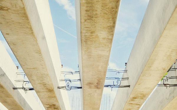 סיבוס רימון - גשר ניצנה החדש